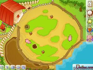 喂养农场小猪